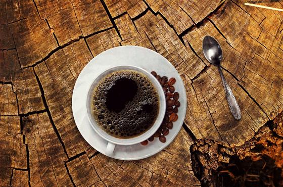 コーヒー業界の採用動画
